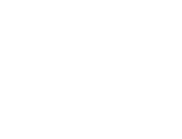Lehmann Food Ingredients